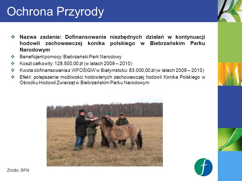 Ochrona Przyrody Nazwa zadania: Dofinansowanie niezbędnych działań w kontynuacji hodowli zachowawczej konika polskiego w Biebrzańskim Parku Narodowym.