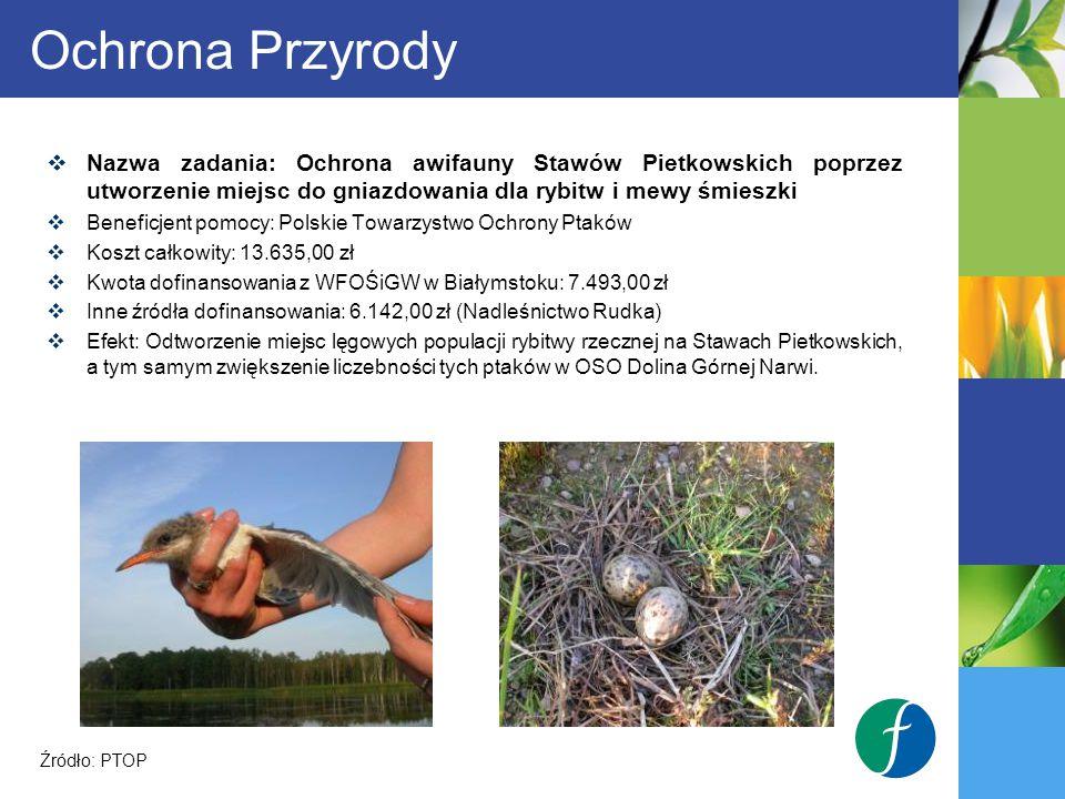 Ochrona Przyrody Nazwa zadania: Ochrona awifauny Stawów Pietkowskich poprzez utworzenie miejsc do gniazdowania dla rybitw i mewy śmieszki.