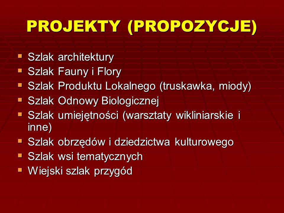 PROJEKTY (PROPOZYCJE)