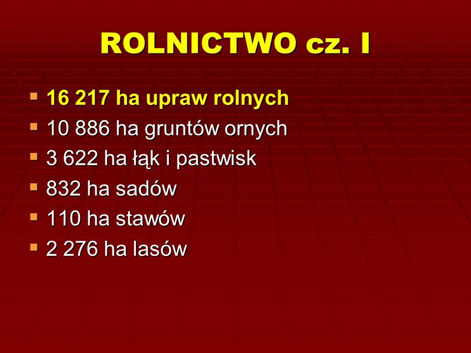 ROLNICTWO cz. I 16 217 ha upraw rolnych 10 886 ha gruntów ornych
