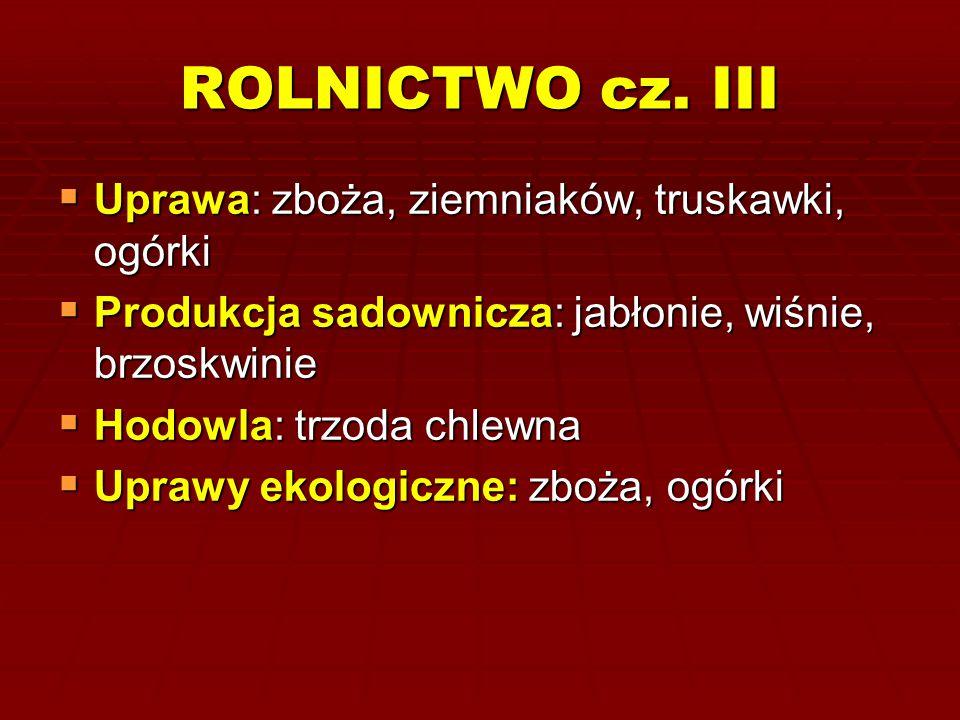 ROLNICTWO cz. III Uprawa: zboża, ziemniaków, truskawki, ogórki