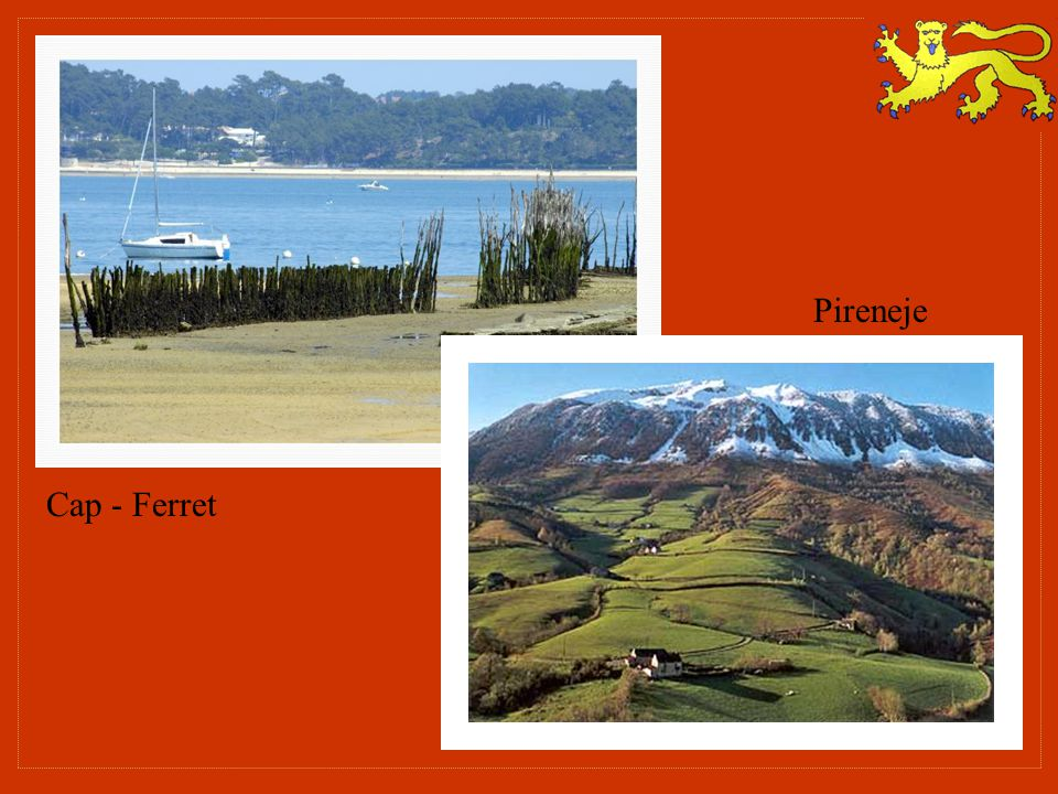 Pireneje Cap - Ferret