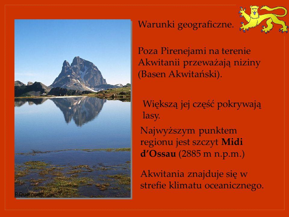 Warunki geograficzne. Poza Pirenejami na terenie Akwitanii przeważają niziny (Basen Akwitański). Większą jej część pokrywają lasy.