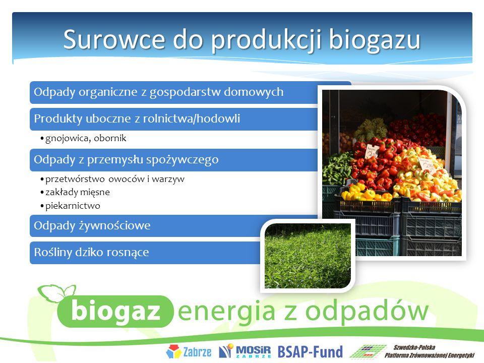Surowce do produkcji biogazu