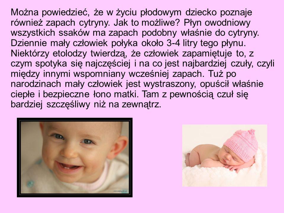 Można powiedzieć, że w życiu płodowym dziecko poznaje również zapach cytryny.