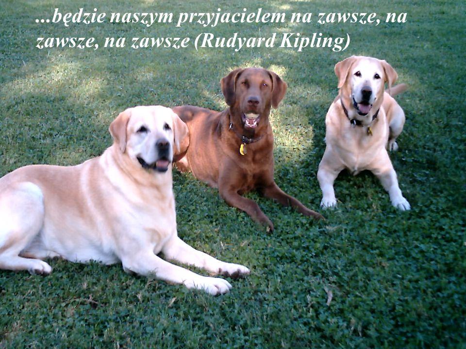 ...będzie naszym przyjacielem na zawsze, na zawsze, na zawsze (Rudyard Kipling)