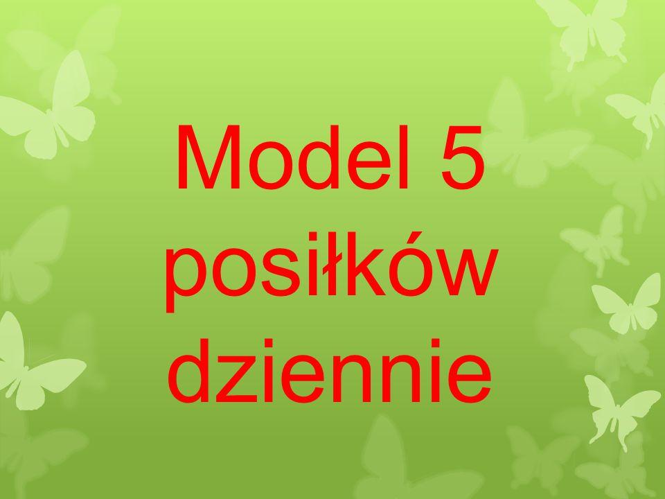 Model 5 posiłków dziennie