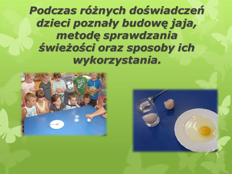 Podczas różnych doświadczeń dzieci poznały budowę jaja, metodę sprawdzania świeżości oraz sposoby ich wykorzystania.