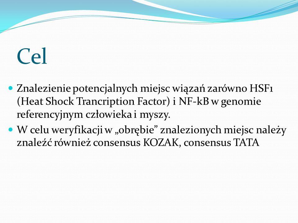 Cel Znalezienie potencjalnych miejsc wiązań zarówno HSF1 (Heat Shock Trancription Factor) i NF-kB w genomie referencyjnym człowieka i myszy.
