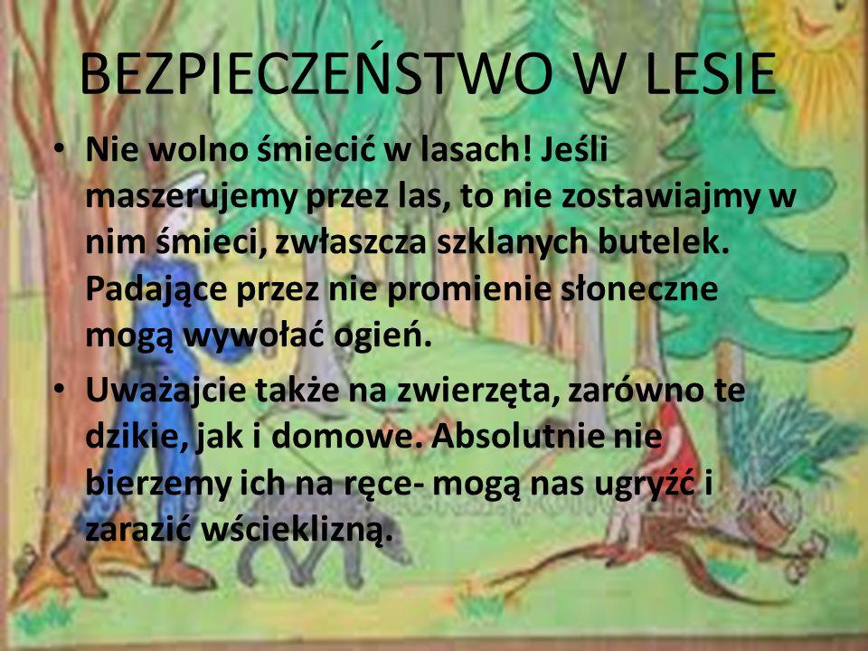 BEZPIECZEŃSTWO W LESIE