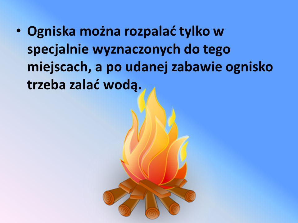Ogniska można rozpalać tylko w specjalnie wyznaczonych do tego miejscach, a po udanej zabawie ognisko trzeba zalać wodą.