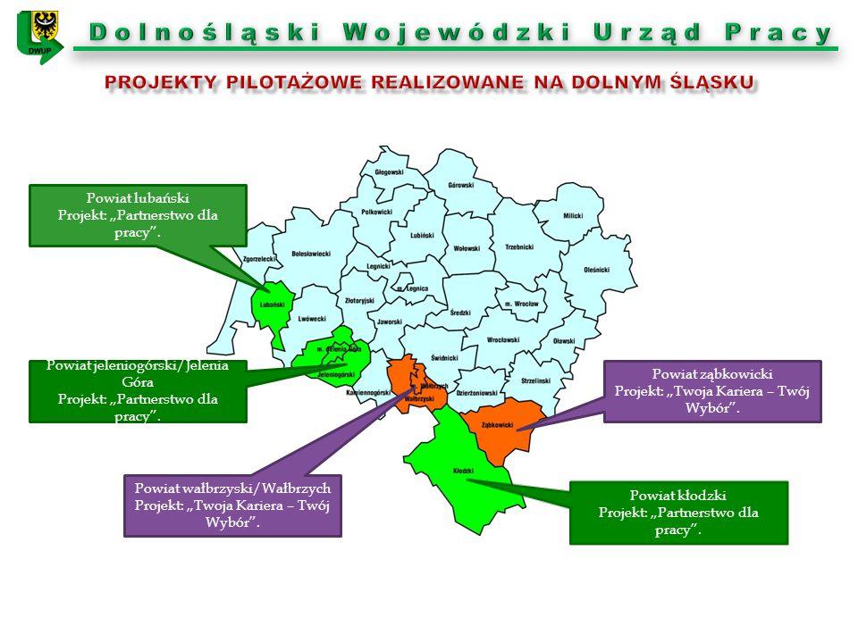 Projekty pilotażowe realizowane na dolnym śląsku