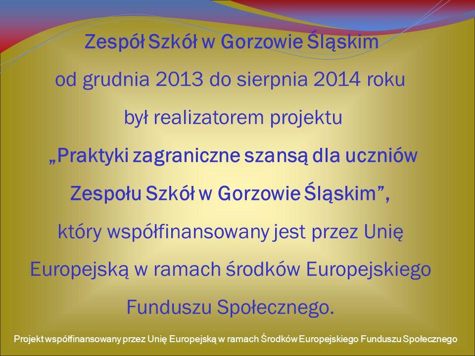 Zespół Szkół w Gorzowie Śląskim