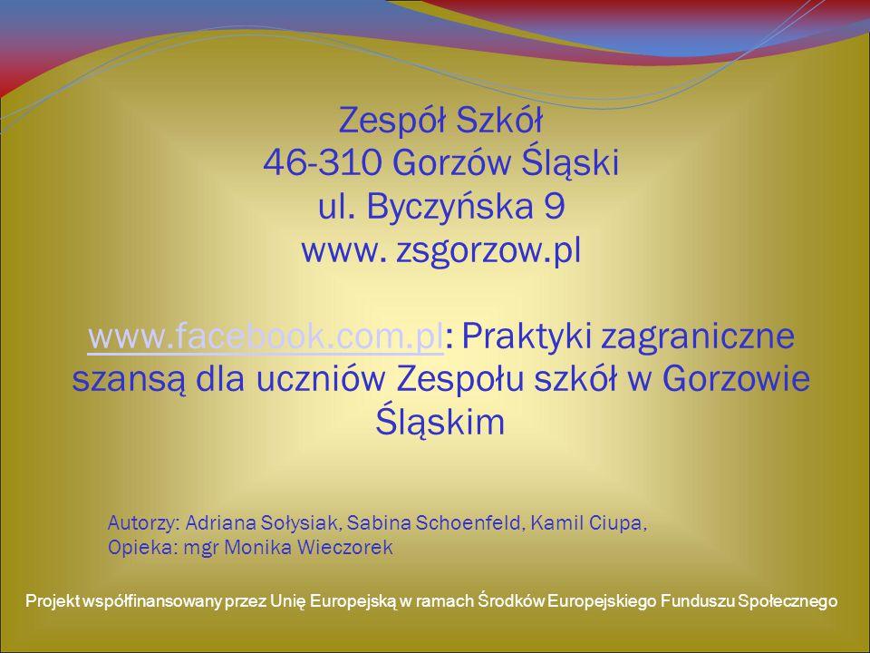 Zespół Szkół 46-310 Gorzów Śląski ul. Byczyńska 9 www. zsgorzow.pl