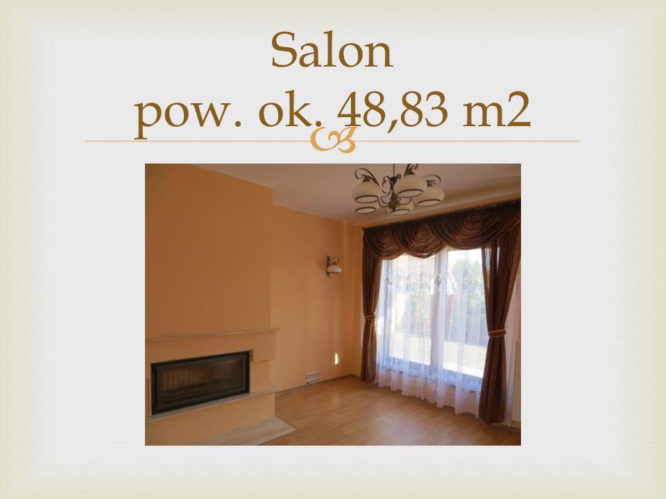 Salon pow. ok. 48,83 m2