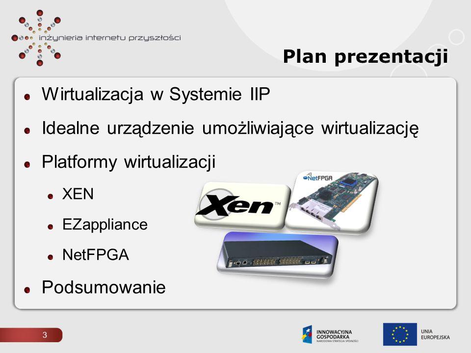 Wirtualizacja w Systemie IIP