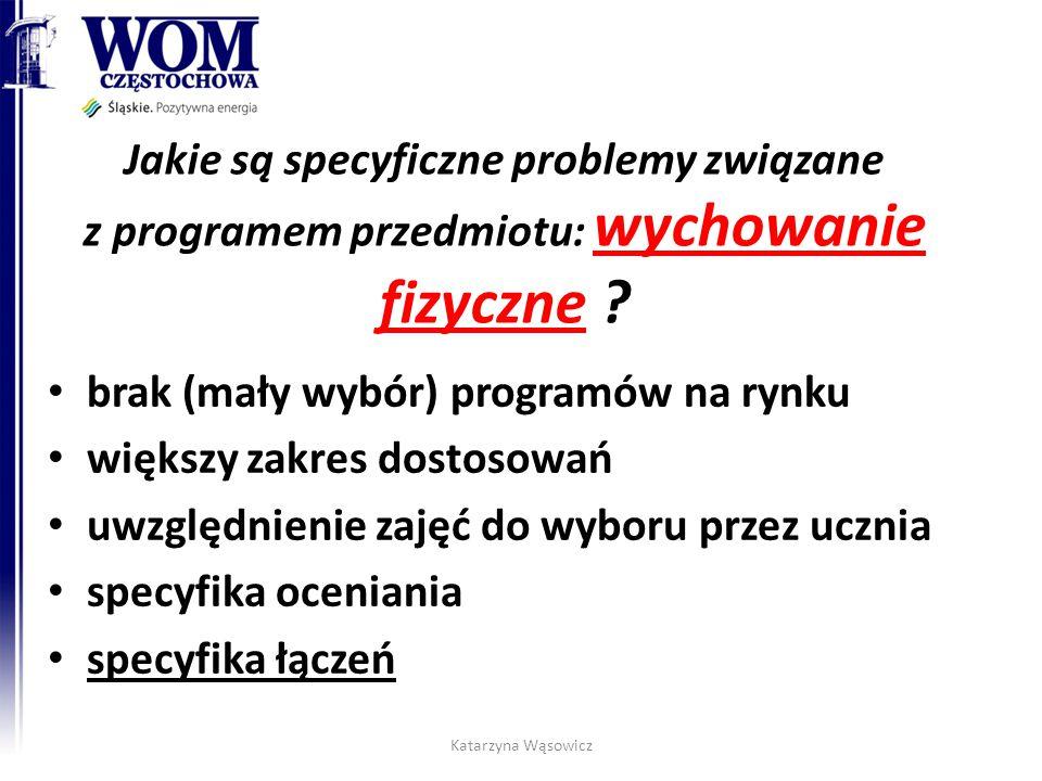 brak (mały wybór) programów na rynku większy zakres dostosowań
