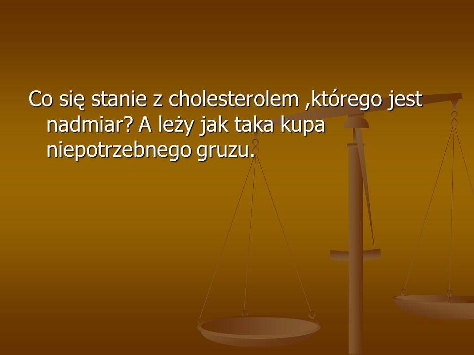 Co się stanie z cholesterolem ,którego jest nadmiar