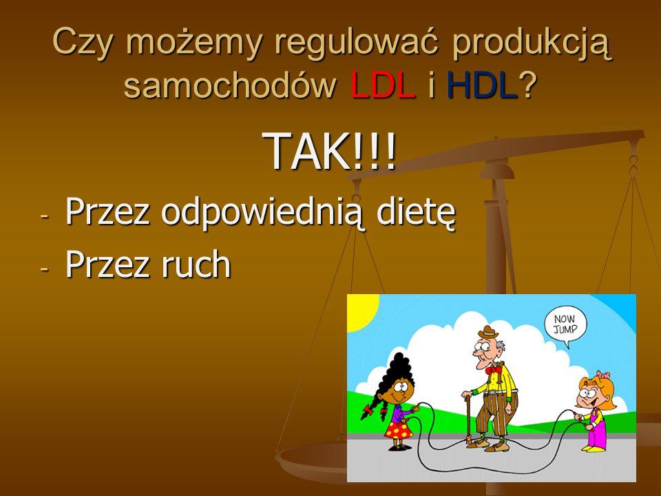 Czy możemy regulować produkcją samochodów LDL i HDL