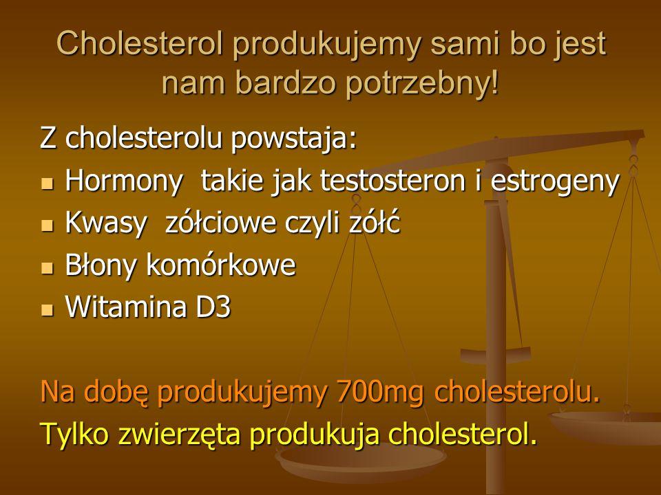 Cholesterol produkujemy sami bo jest nam bardzo potrzebny!