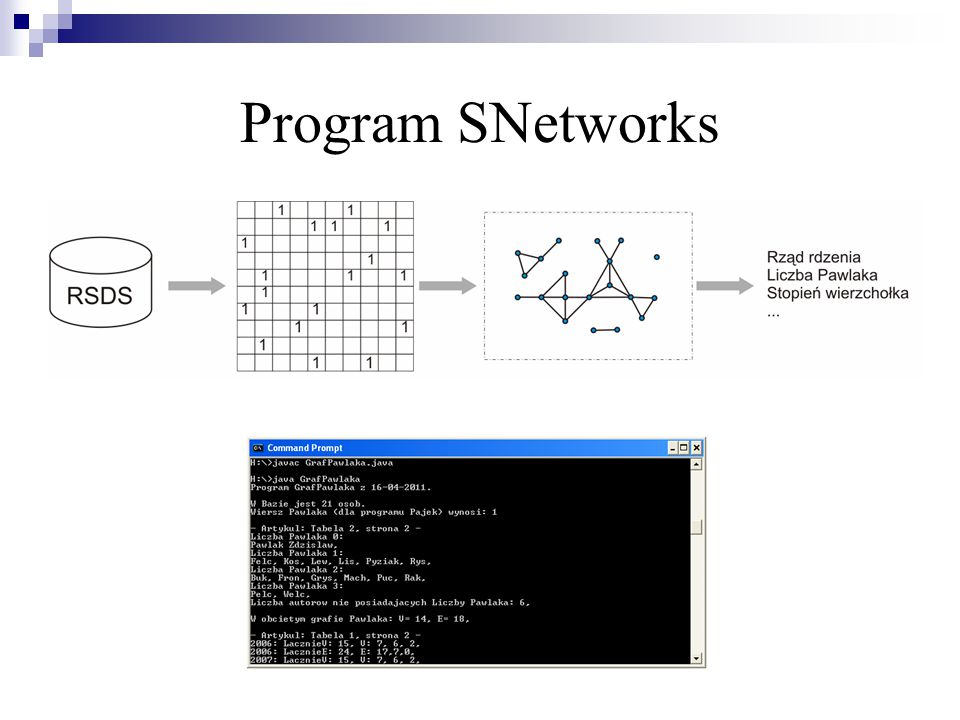 Program SNetworks