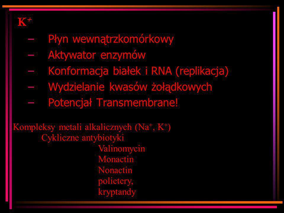 K+ Płyn wewnątrzkomórkowy Aktywator enzymów