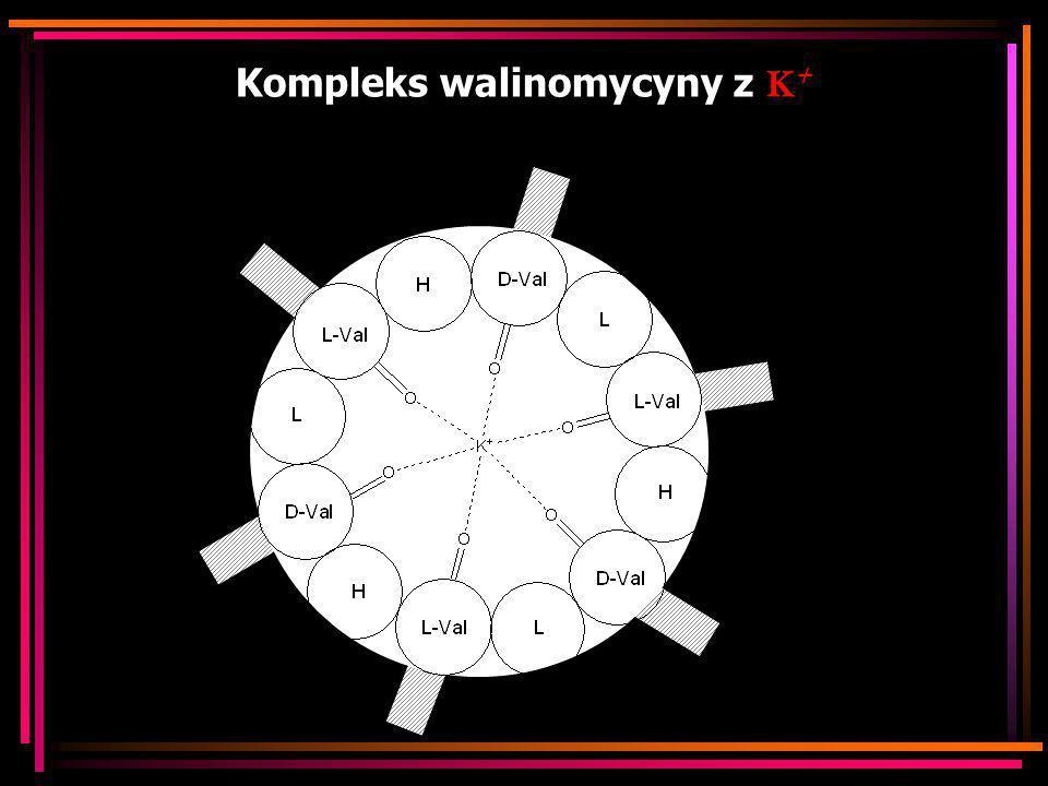 Kompleks walinomycyny z K+