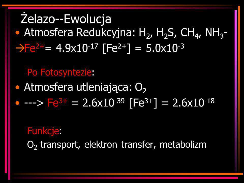Żelazo--Ewolucja Atmosfera Redukcyjna: H2, H2S, CH4, NH3-