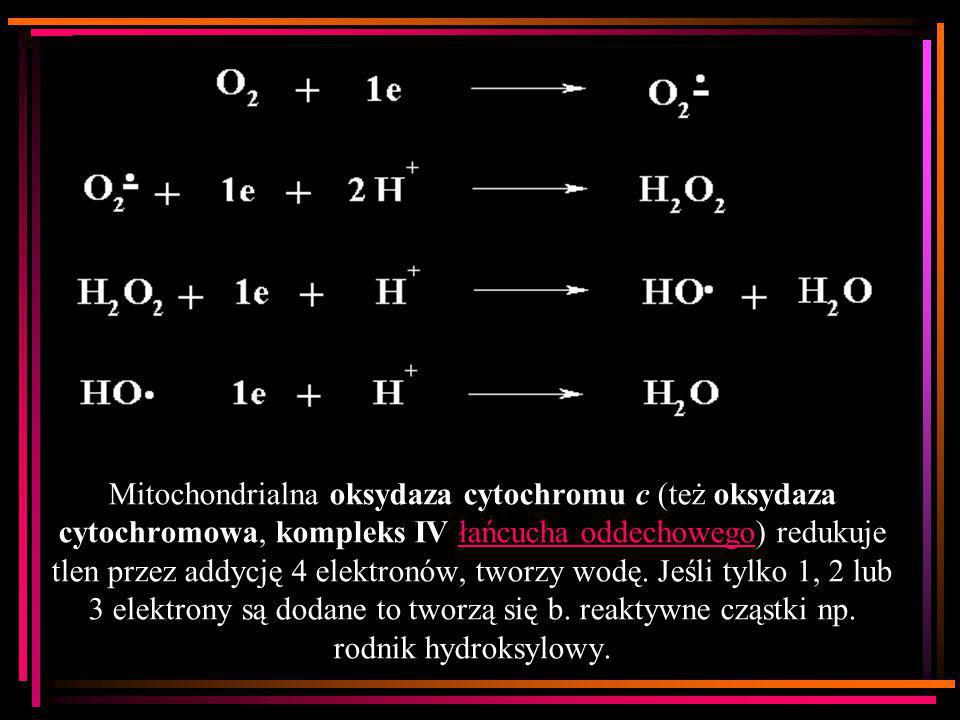 Mitochondrialna oksydaza cytochromu c (też oksydaza cytochromowa, kompleks IV łańcucha oddechowego) redukuje tlen przez addycję 4 elektronów, tworzy wodę.