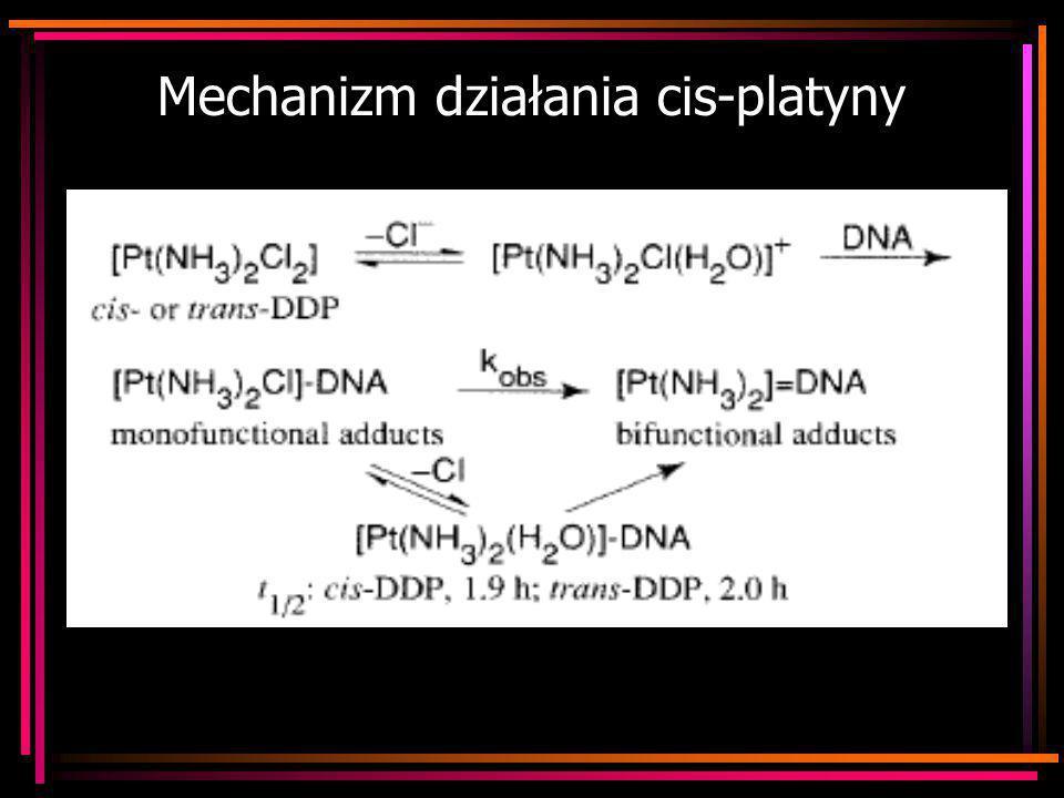 Mechanizm działania cis-platyny