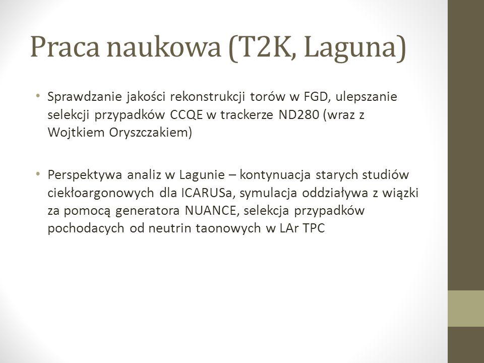 Praca naukowa (T2K, Laguna)