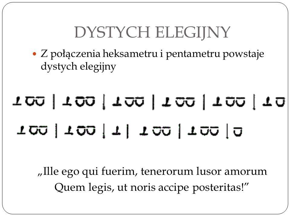 "DYSTYCH ELEGIJNY ""Ille ego qui fuerim, tenerorum lusor amorum"