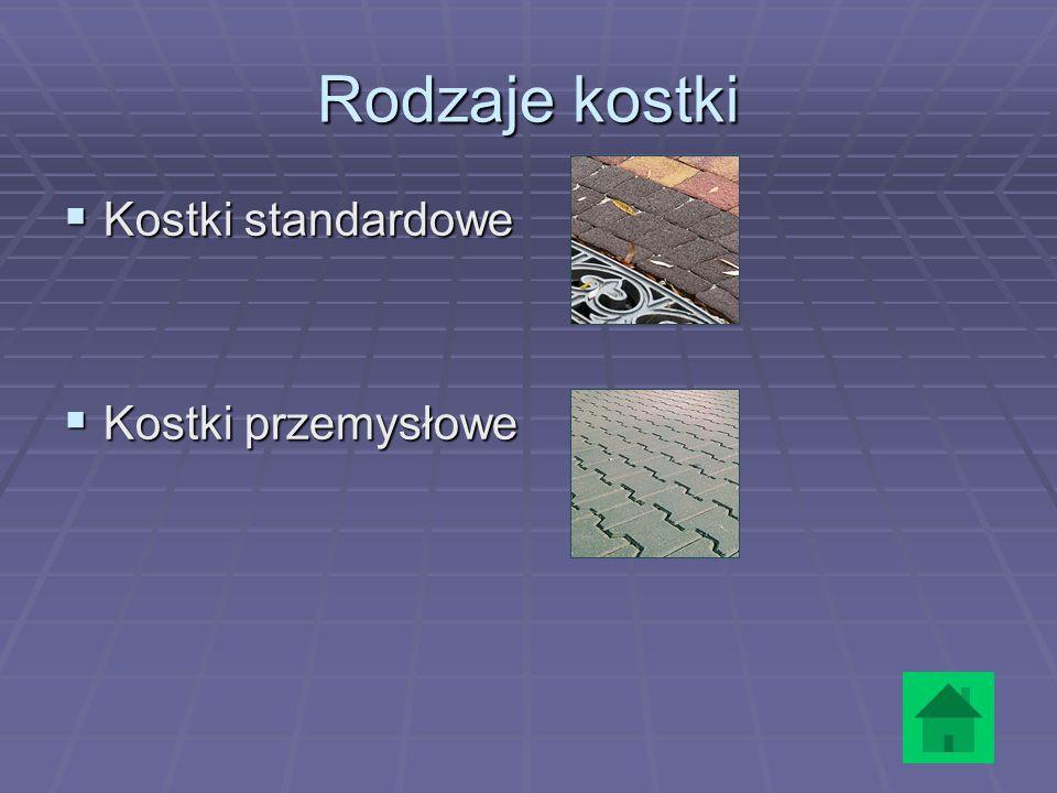 Rodzaje kostki Kostki standardowe Kostki przemysłowe