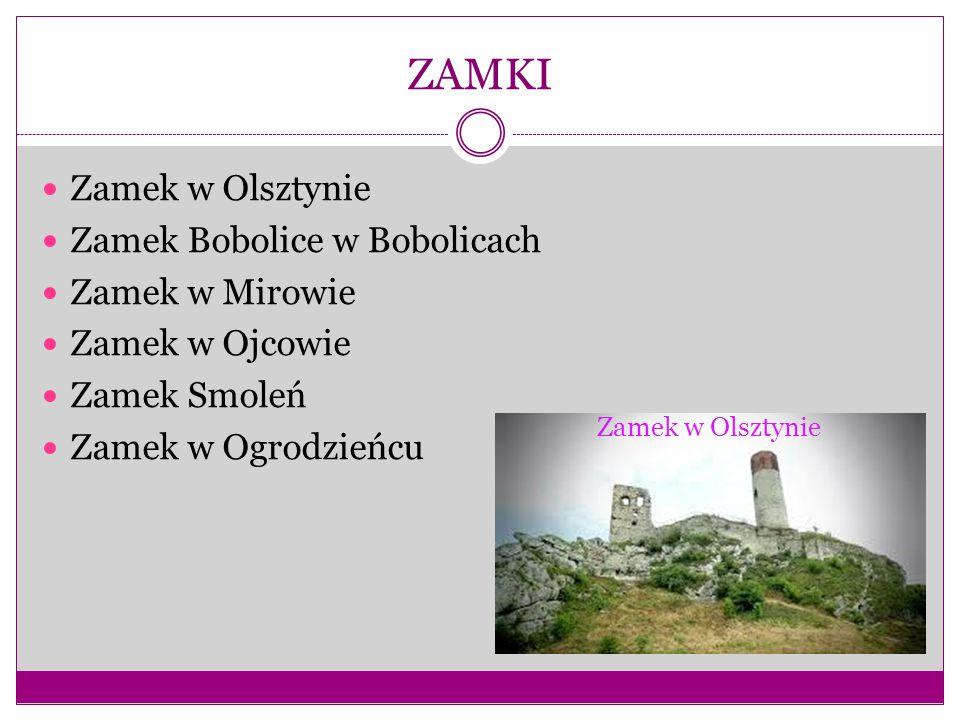 ZAMKI Zamek w Olsztynie Zamek Bobolice w Bobolicach Zamek w Mirowie