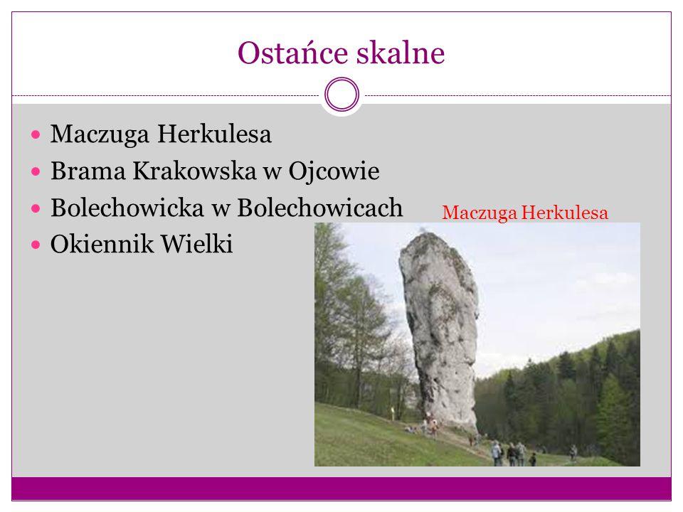 Ostańce skalne Maczuga Herkulesa Brama Krakowska w Ojcowie