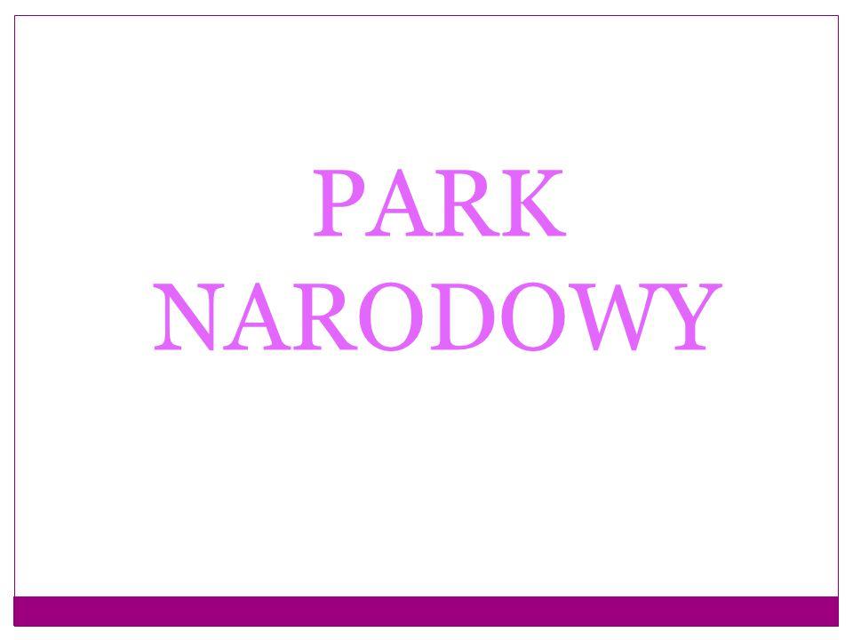 PARK NARODOWY