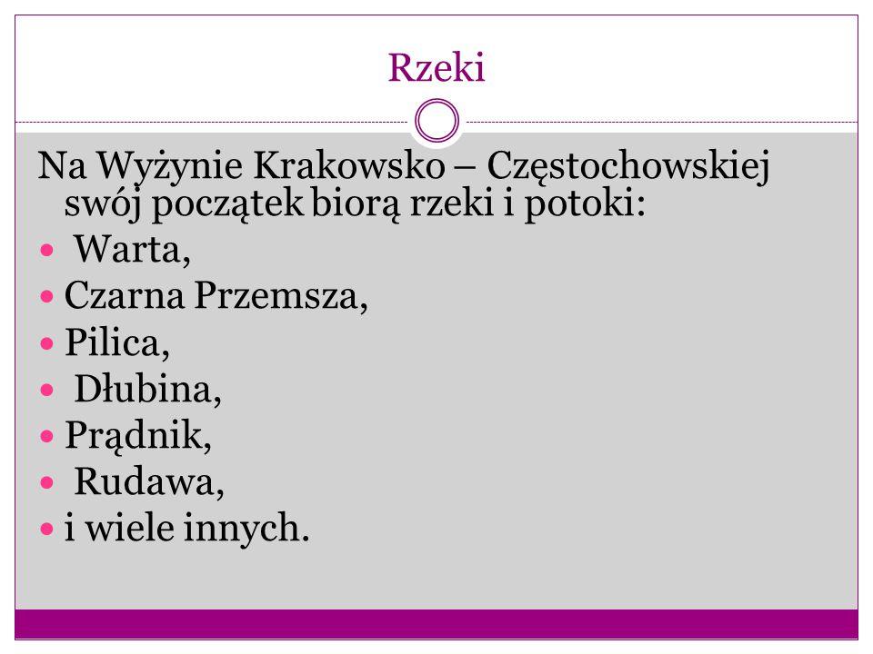 Rzeki Na Wyżynie Krakowsko – Częstochowskiej swój początek biorą rzeki i potoki: Warta, Czarna Przemsza,