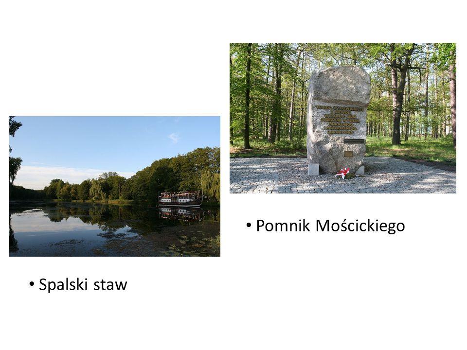 Pomnik Mościckiego Spalski staw
