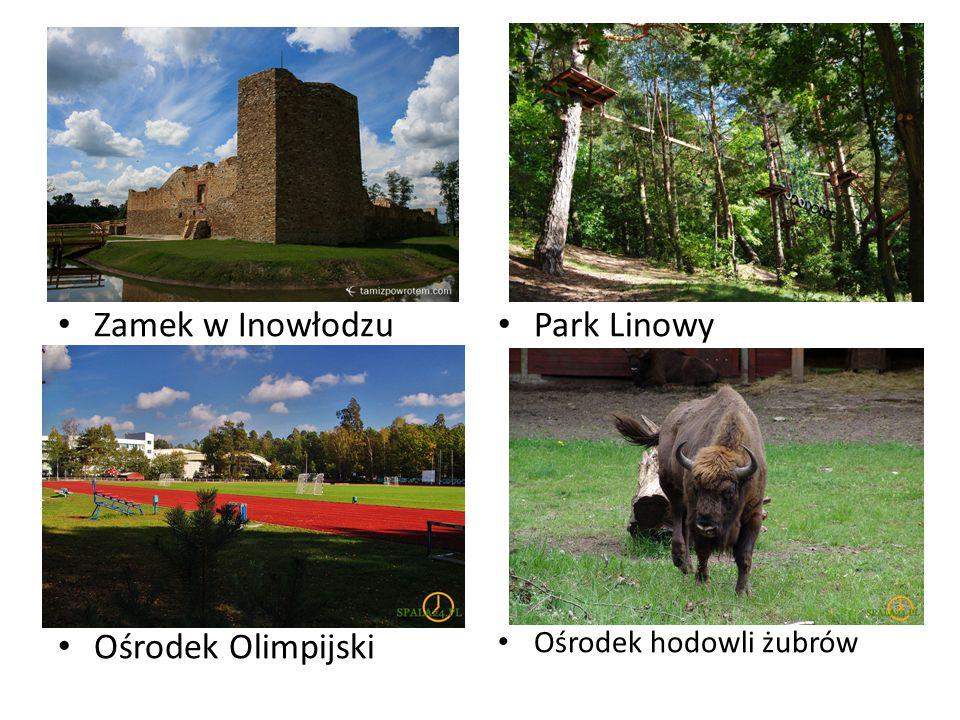 Zamek w Inowłodzu Ośrodek Olimpijski Park Linowy