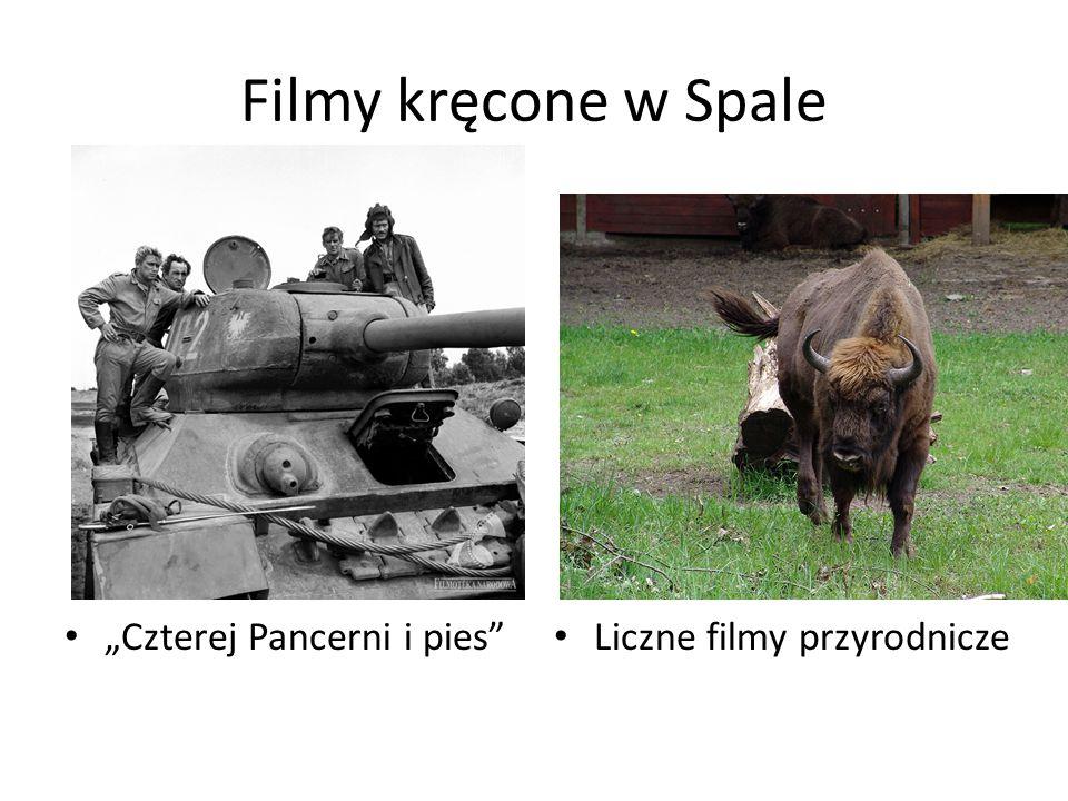 """Filmy kręcone w Spale """"Czterej Pancerni i pies"""