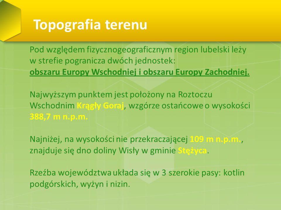 Topografia terenu Pod względem fizycznogeograficznym region lubelski leży w strefie pogranicza dwóch jednostek: