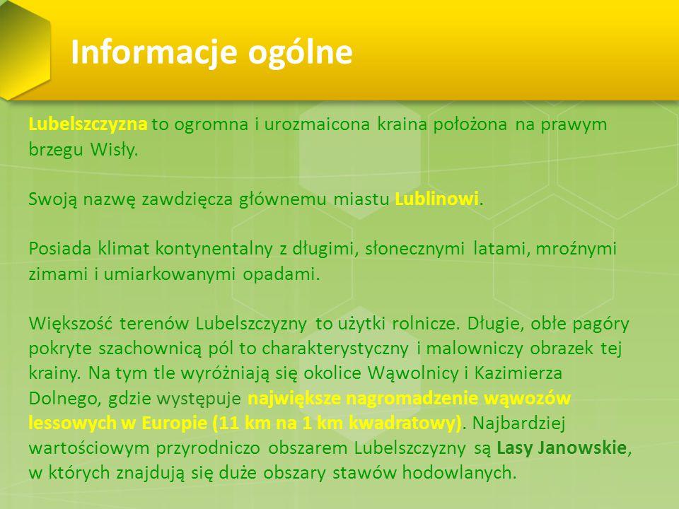 Informacje ogólne Lubelszczyzna to ogromna i urozmaicona kraina położona na prawym brzegu Wisły. Swoją nazwę zawdzięcza głównemu miastu Lublinowi.