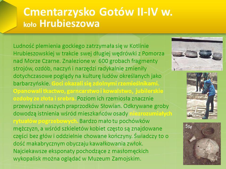 Cmentarzysko Gotów II-IV w. koło Hrubieszowa