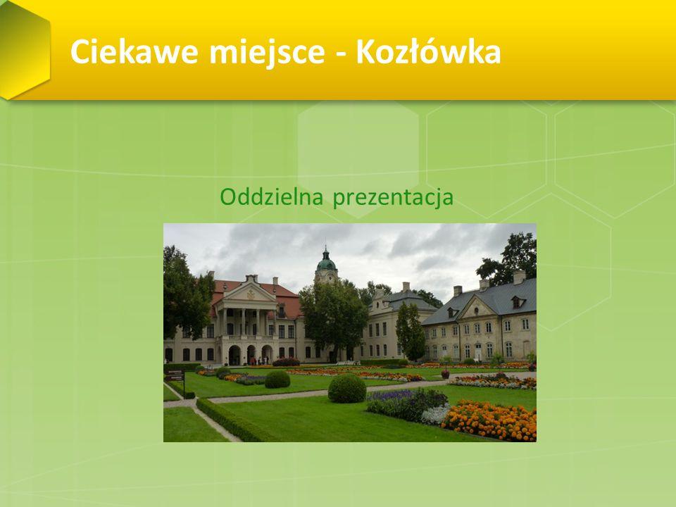 Ciekawe miejsce - Kozłówka