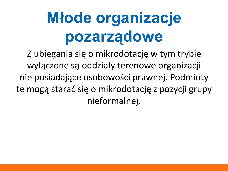 Młode organizacje pozarządowe