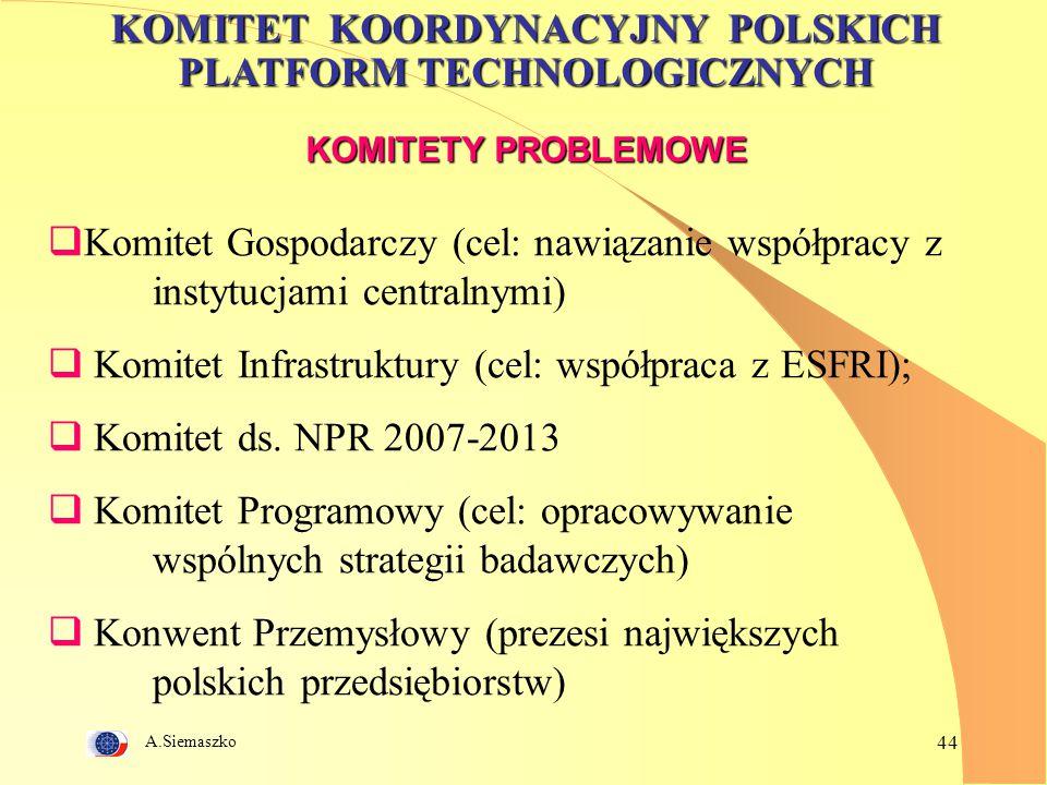 Komitet Infrastruktury (cel: współpraca z ESFRI);