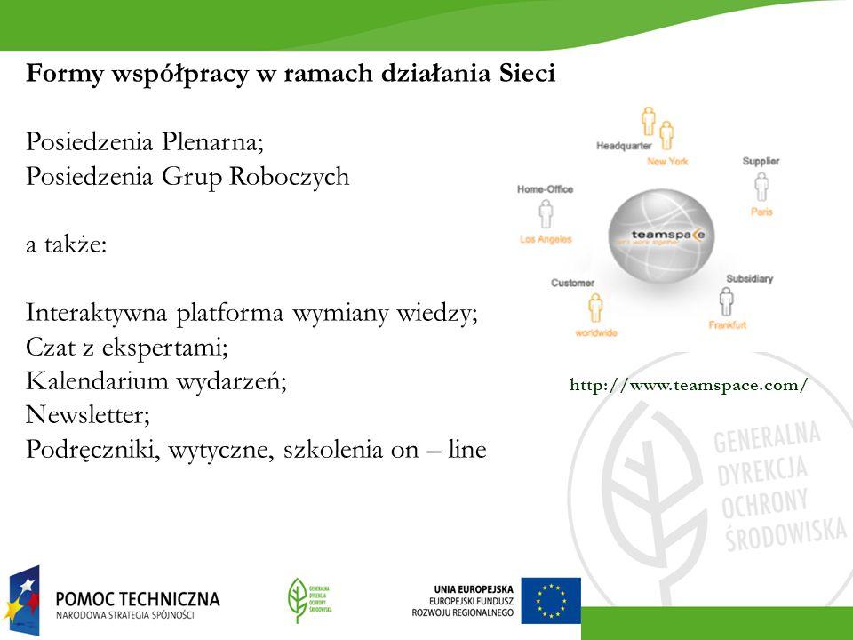 Formy współpracy w ramach działania Sieci Posiedzenia Plenarna;