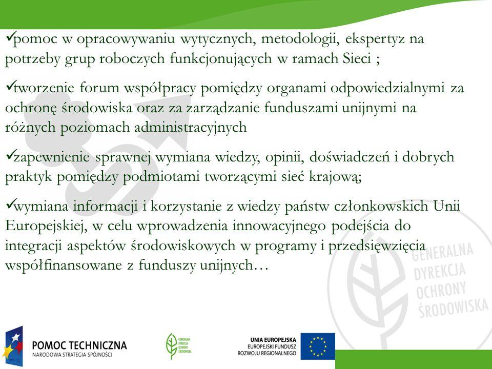 pomoc w opracowywaniu wytycznych, metodologii, ekspertyz na potrzeby grup roboczych funkcjonujących w ramach Sieci ;