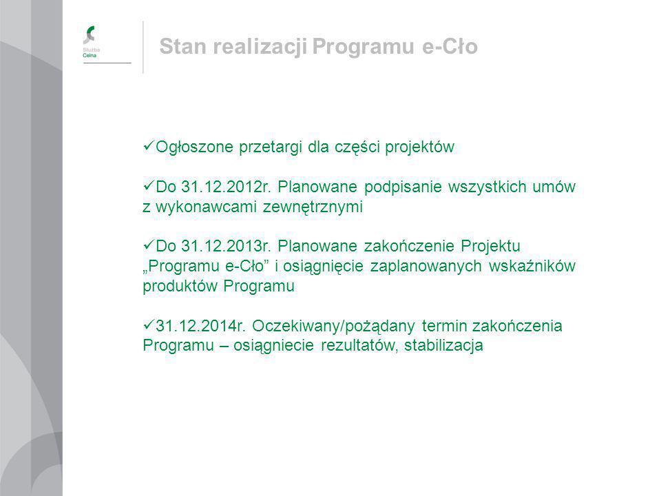 Stan realizacji Programu e-Cło