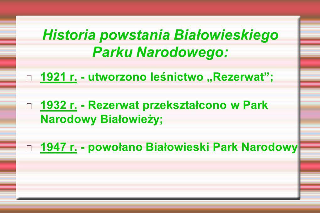 Historia powstania Białowieskiego Parku Narodowego: